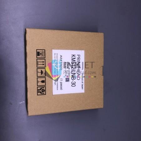 Original EPSON R1500/1400/r390R270 R1430 Printhead .F173050