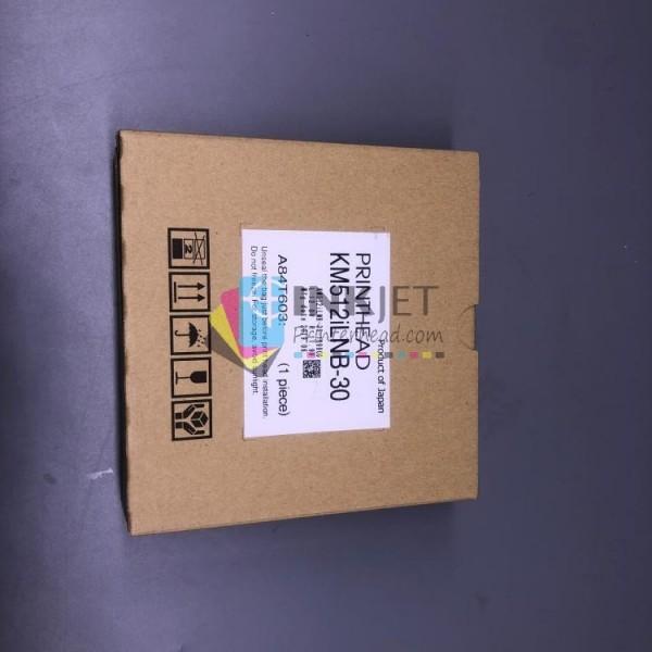 EPSON Printhead R1500/1400/r390R270 R1430 Part No.F173050