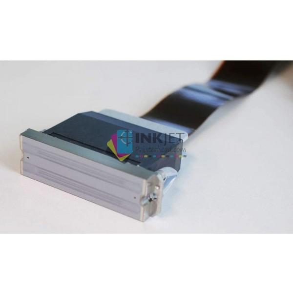 Epson DX5 R2880/R2000/R1900 2nd Encrypted-F186000